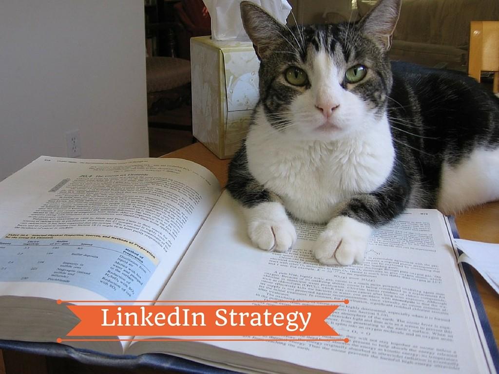 5 ragioni per investire su LinkedIn