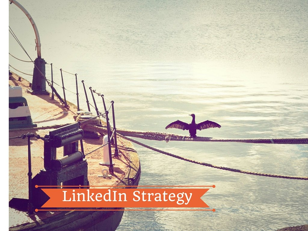 12-Strategy