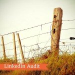 Linkedin Audit: la registrazione su Blab