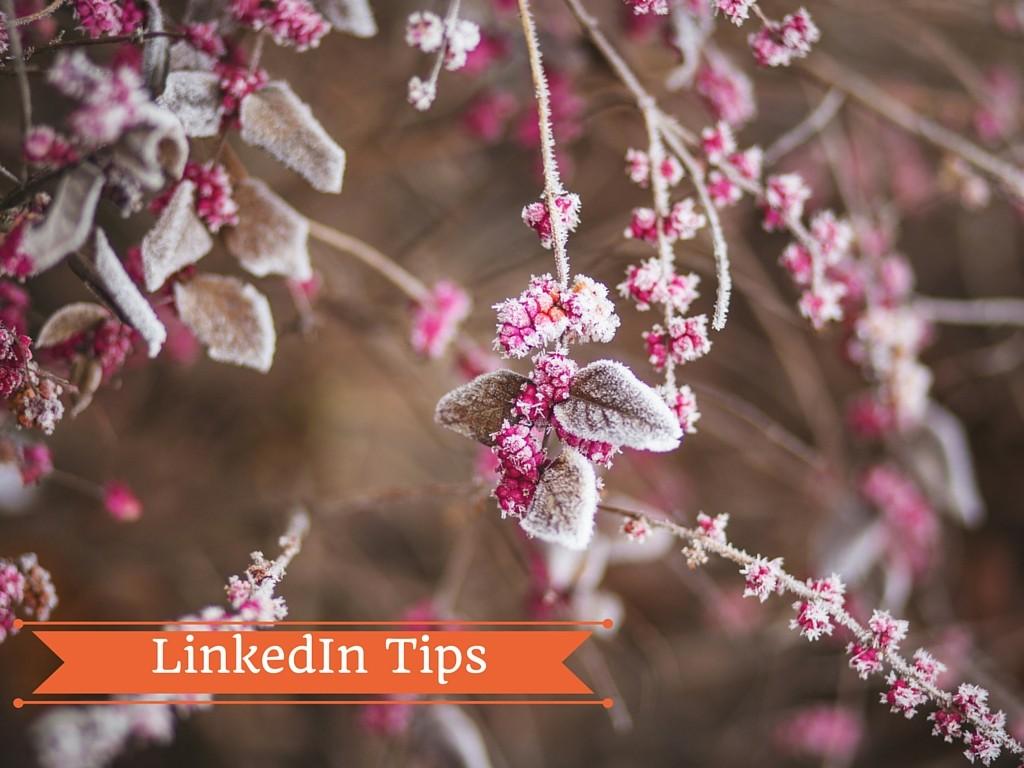 LinkedIn Tips: hai inserito il Riepilogo nel Profilo?