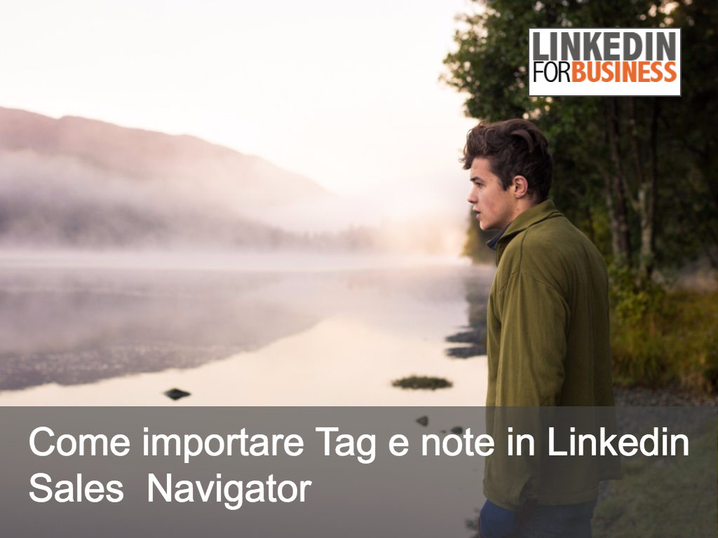 Come importare note e Tag su LinkedIn Sales  Navigator