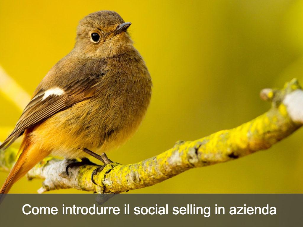 i 10 comandamenti del social selling