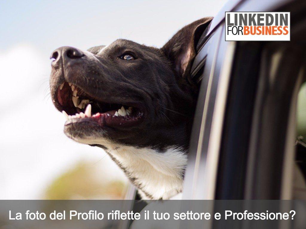 LinkedIn Profile: la tua foto rispecchia il tuo settore e Professione?