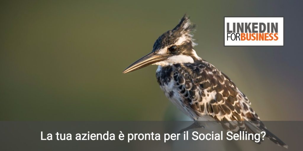 Social Selling: 5 ingredienti per una ricetta vincente