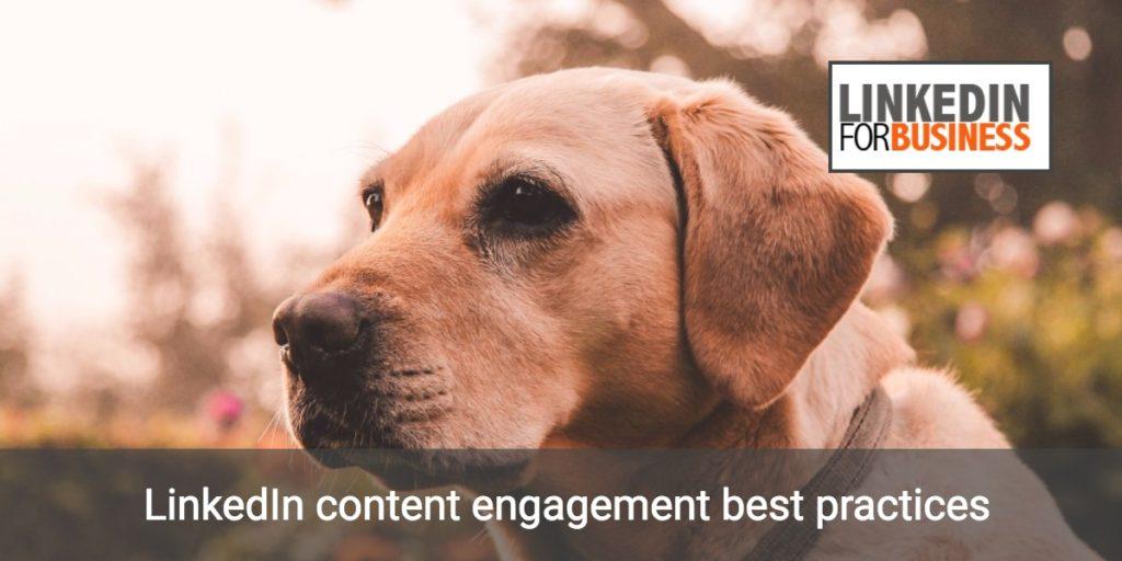 Content engagement su LinkedIn: alcune best practice