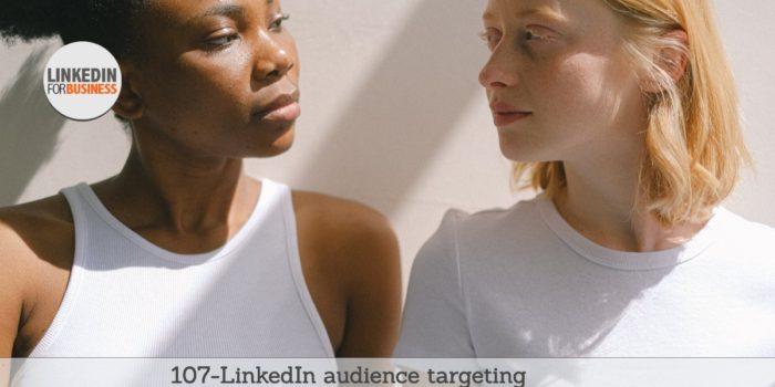107-Audience-targeting su LinkedIn-post